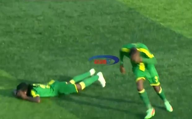 Фото №1 - Атака пчел прервала футбольный матч: игроки спасались бегством (видео)