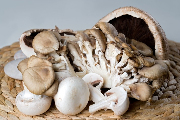 Фото №1 - Ученые назвали вескую причину есть больше грибов