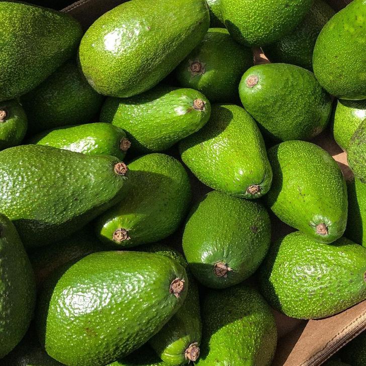 Фото №8 - Как вырастить авокадо у себя дома: практические советы