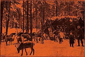 Фото №5 - Ночь с елкой: как праздновали Новый год в начале XX века