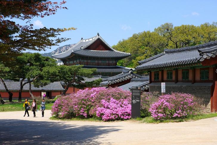 Фото №7 - Скорее в Корею: красочный путеводитель по стране