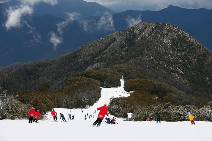 Фото №1 - Австралийская зима