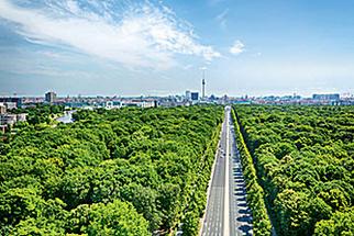 Фото №4 - Выходные в Берлине