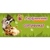 Сертификат от зоомагазина «Любимчик»
