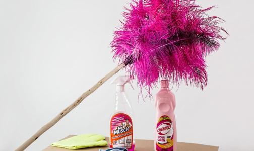 Фото №1 - Эксперты назвали пять способов сделать уборку в доме без использования бытовой химии