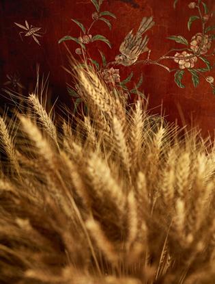 Фото №3 - Бриллиантовые колосья в коллекции Les Bles de Chanel