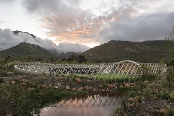 Фото №1 - Кафе с садом в Южной Африке