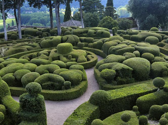 Фото №4 - Сад мечты: 6 оригинальных идей для дачного участка