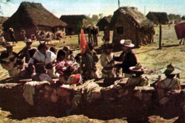 Фото №1 - Горный мир вичолов