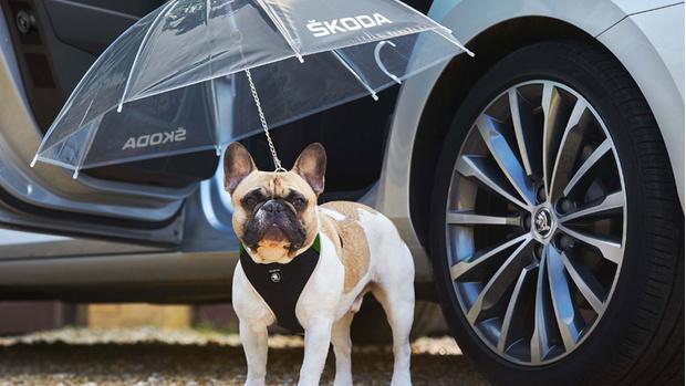 Фото №9 - Лучшие и худшие шутки автомобильных брендов к 1 апреля