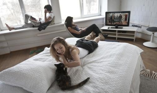 Фото №1 - Кошки нормализуют давление и продлевают жизнь мужчинам