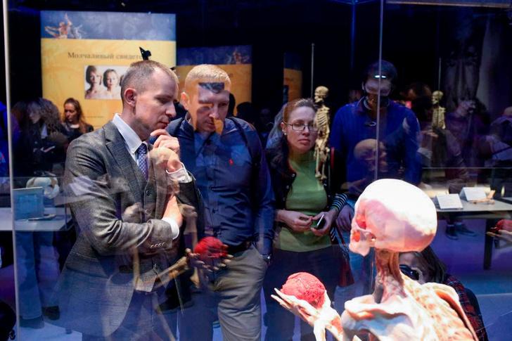 Фото №1 - В Москве состоялся специальный показ международной выставки BODY WORLDS