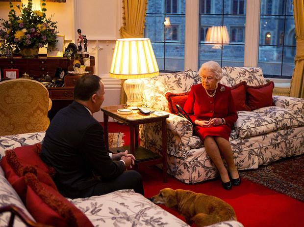 Фото №3 - Неожиданная роль, которую исполняли королевские корги при дворе Елизаветы II