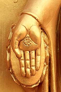 Фото №5 - Почему Будда сидит в позе лотоса?