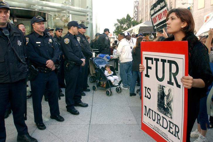 Фото №1 - В Сан-Франциско запретили продавать мех