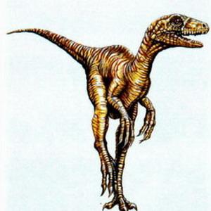 Фото №1 - Доисторического ящера-охотника нашли в Аргентине
