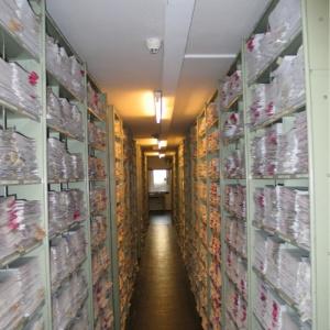 Фото №1 - Открыт доступ к документам Третьего Рейха