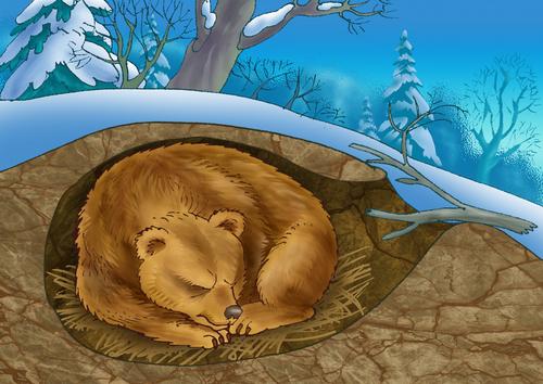 shutterstockСпячка, или зимний сон, — это важное защитное «приспособление» организма теплокровных животных, таких как медведи, еноты, барсуки, хомяки, для перенесения неблагоприятных кормовых и климатических условий. У пустынных животных спячка приходится на летний сезон.