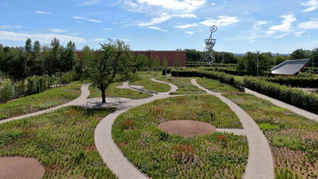 Фото №4 - Сад Пита Удольфа на кампусе Vitra