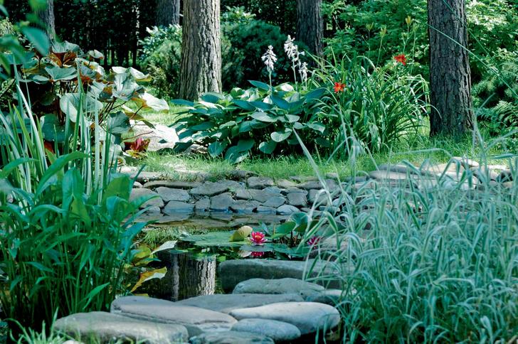 Фото №1 - ТОП-5 вопросов читателей на тему сада