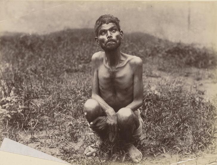 Фото №1 - Бедные детки: реальные истории детей-маугли