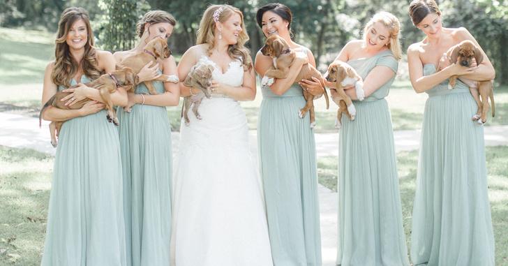 Фото №1 - Ми-ми-ми-time: Только посмотри, чем (точнее, кем) заменили свадебный букет!