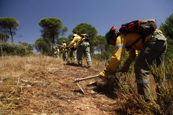 Фото №3 - Мокрыми штанами по лесному пожару