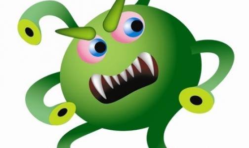 Фото №1 - Людям угрожает 300 тысяч неизвестных вирусов