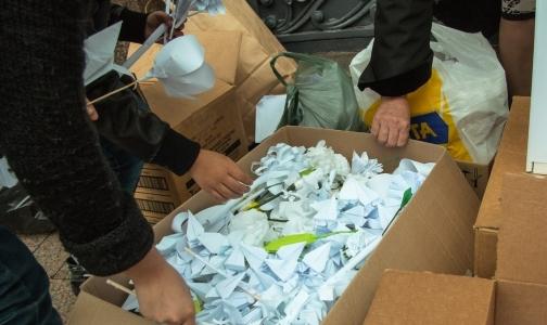Фото №1 - Акция «Белый цветок» собрала два миллиона рублей для тяжелобольных детей