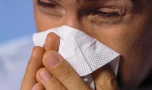 Фото №1 - Ученые выяснили, почему мужчины тяжелее переносят грипп