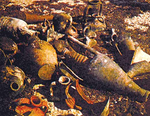Фото №1 - Пушки с морского дна