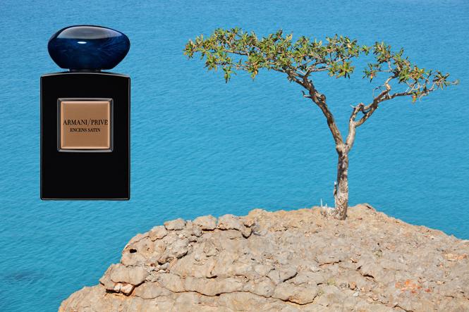 Фото №41 - С севера на юг: парфюмерное путешествие по Африке