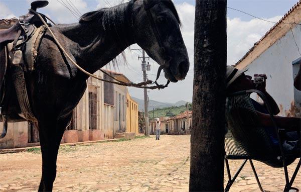 Фото №4 - Кубинский ром