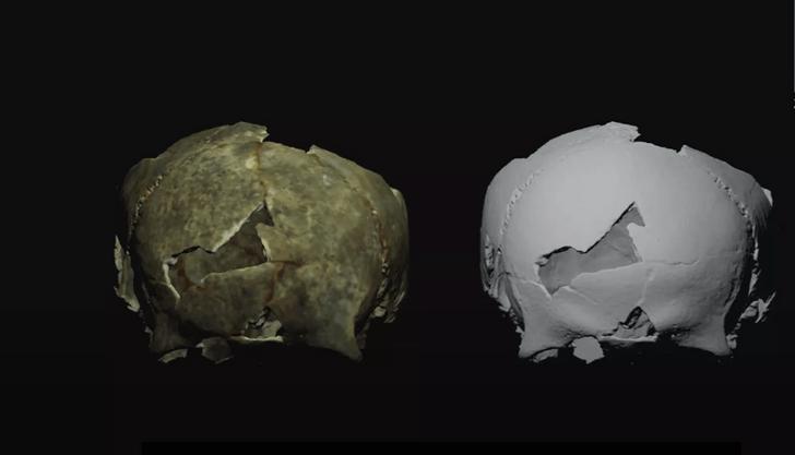 Фото №1 - В Крыму найден череп эпохи бронзы со следами трепанации