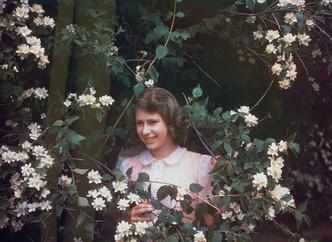 Фото №6 - Принцесса Шарлотта растет копией прабабушки: 4 доказательства