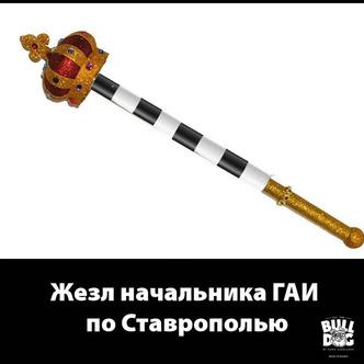Фото №6 - «Людовик Ставропольский»: Харламов высмеял гаишника с золотым унитазом