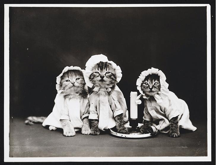 Фото №19 - Живые куклы