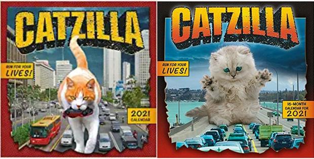 Фото №23 - Котзиллы наступают! Инстаграм дня, в котором гигантские котики захватывают мир 😽