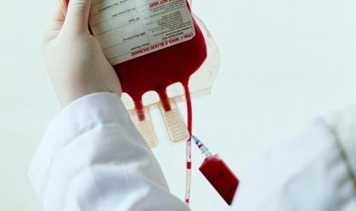 Фото №1 - В Петербурге уничтожили 700 литров донорской плазмы крови, которой хватило бы на тысячу человек