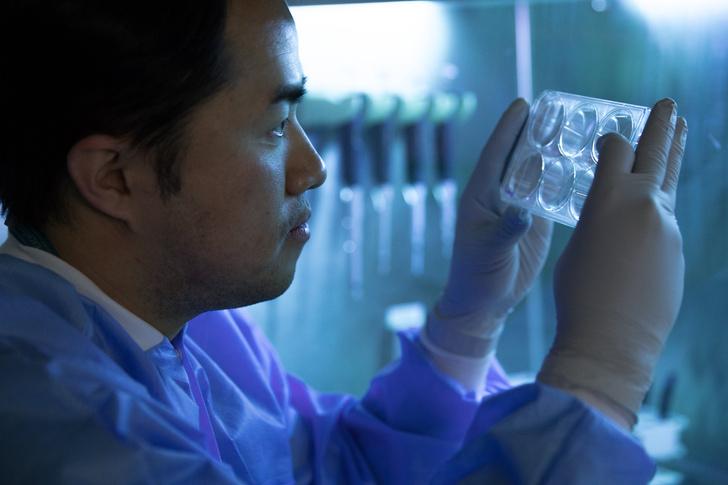 Фото №1 - Развитие болезни Паркинсона затормозили при помощи стволовых клеток