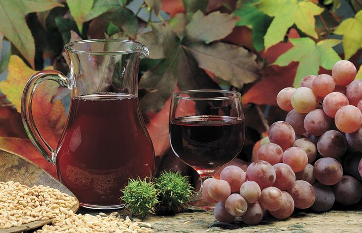 Фото №1 - Красное вино оказалось полезным для зубов