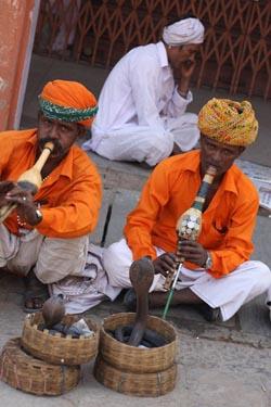 Фото №1 - Сикхи по имени Сингх