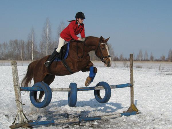 Фото №40 - Девушки на коне: самые романтичные наездницы Ульяновска
