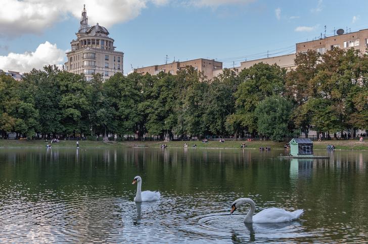 Фото №1 - Москва в списке лучших городов для литературного туризма