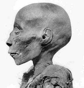 Фото №1 - Египтологи проведут ДНК-тест мумии Тутмоса I