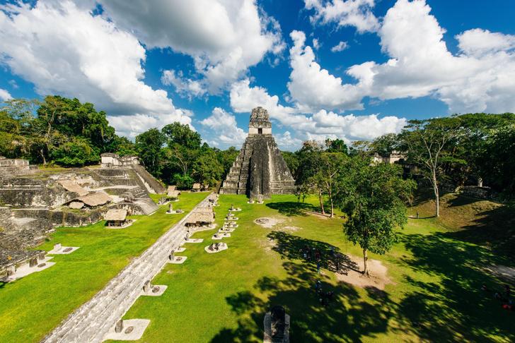 Фото №1 - В древнем городе майя обнаружено посольство