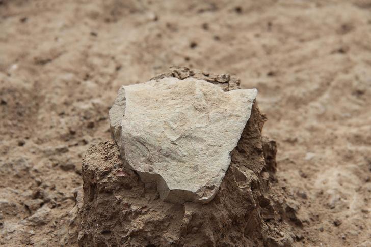 Фото №1 - В Кении найдены древнейшие орудия труда возрастом 3,3 млн лет