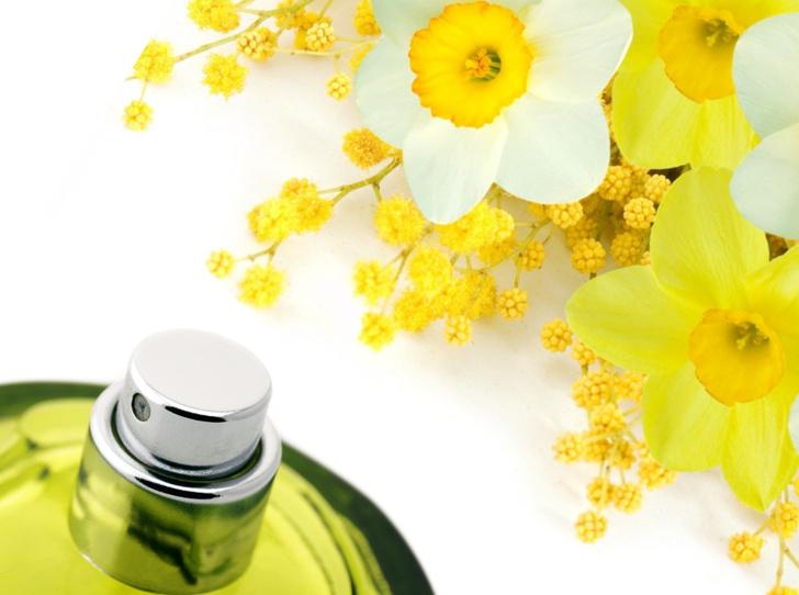 Фото №1 - Для влюбленных в весну: лучшие ароматы с мимозой и нарциссом