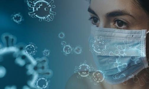 Фото №1 - Экс-главный врач больницы Боткина объяснил, почему ВОЗ объявила пандемию Covid-2019 в мире