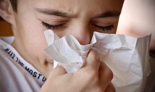 Фото №1 - ВОЗ обсудит опасность нового коронавируса на экстренном заседании